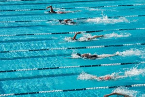 43343-competitive-swimming